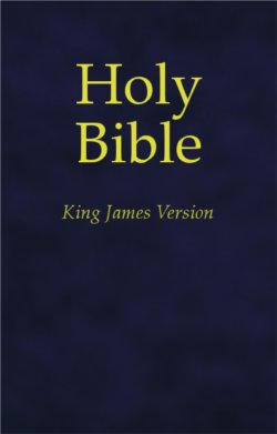 Holy Bible King James Version KJV Large Print Red Letter BIBLE Study Helps 2007